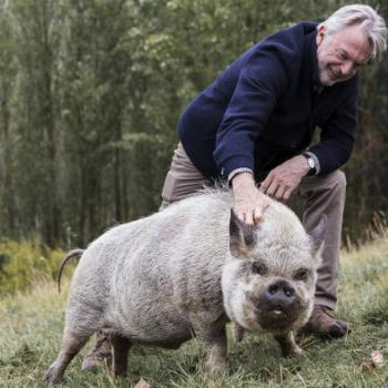 Financial Times, At Home with Sam Neill